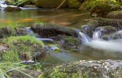 Petite cascade à écriture ligne par ligne de forêt Image libre de droits