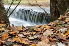 Petite cascade à écriture ligne par ligne en automne Photographie stock