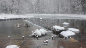 Petite cascade à écriture ligne par ligne en hiver clips vidéos