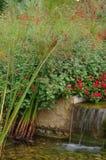 Petite cascade à l'entrée de jardins botaniques photo libre de droits