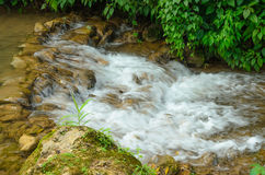 Petite cascade Photos stock