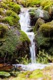 Petite cascade Photographie stock