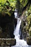Petite cascade au centre biologique de Las Quebradas photographie stock