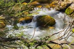 Petite cascade d'isolement sur un courant -2 de montagne photographie stock libre de droits