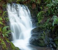 Petite cascade dans la gamme côtière de l'Orégon du sud photos stock