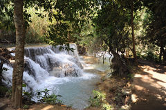 Petite cascade dans la jungle du Laos Image libre de droits