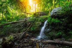 Petite cascade dans la région sauvage Photographie stock