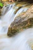 Petite cascade dans un jardin Photographie stock libre de droits