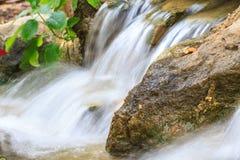 Petite cascade dans un jardin Photos libres de droits