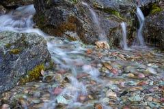 Petite cascade de écoulement Photo libre de droits