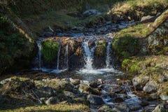 Petite cascade de courant de montagne photo stock