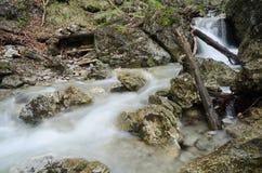 Petite cascade en Mala Fatra NP, Slovaquie Photographie stock