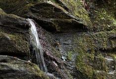 Petite cascade jaillissant du visage de falaise image libre de droits