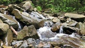 Petite cascade sur la rivière de montagne banque de vidéos