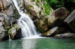 Petite cascade tropicale de forêt profonde Photographie stock