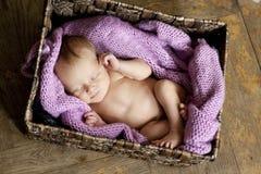 Petite chéri mignonne Photographie stock