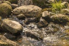 Petite crique de rivière de montagne photographie stock libre de droits