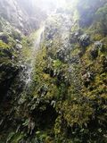 Petite et belle cascade de parc naturel photographie stock libre de droits