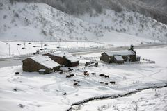 Petite ferme avec la neige Photo libre de droits