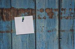 Petite feuille blanche pure sur un mur en bois bleu Photographie stock libre de droits
