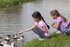 Petite fille à l'étang de canard Photographie stock