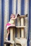 Petite fille accrochant sur le cadre de s'élever de chat images stock
