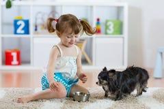 Petite fille adorable alimentant le chien mignon Photos libres de droits
