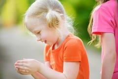 Petite fille adorable attrapant de petits babyfrogs Photos stock