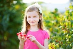 Petite fille adorable mangeant des framboises outre de ses doigts Image libre de droits