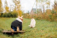 Petite fille adorable marchant avec son chat Image stock