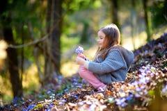 Petite fille adorable sélectionnant les premières fleurs du ressort dans les bois Photo stock