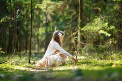Petite fille adorable sélectionnant les premières fleurs du ressort dans les bois la belle journée de printemps ensoleillée Image stock