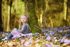 Petite fille adorable sélectionnant les premières fleurs du ressort dans les bois la belle journée de printemps ensoleillée Image libre de droits