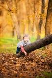 Petite fille adorable sur l'arbre Photo libre de droits