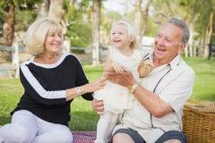 Petite-fille affectueuse et grands-parents jouant au parc Image libre de droits