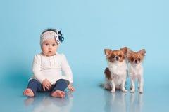 Petite fille avec des animaux familiers Photo stock