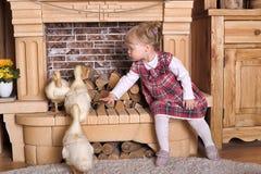 Petite fille avec des canetons Photo libre de droits