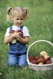 Petite fille avec des champignons à disposition sur la pelouse verte Image stock