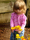 Petite fille avec des fleurs Photo libre de droits