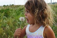 Petite fille avec des pissenlits photos stock