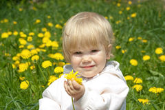 Petite fille avec des pissenlits Images stock