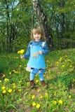 Petite fille avec des pissenlits Image stock
