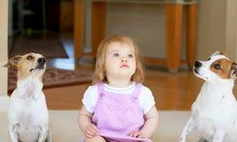 Petite fille avec deux Jack Russell Terriors image libre de droits