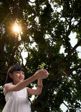 Petite fille avec la lumière du soleil dans la forêt Photo stock