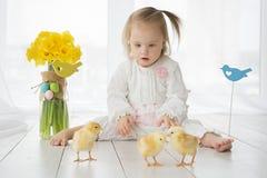Petite fille avec la trisomie 21 jouant avec les poulets jaunes photo stock