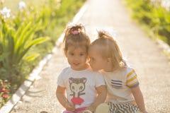 Petite fille avec la trisomie 21 jouant avec son amie sur la nature Image libre de droits