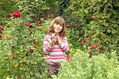 Petite fille avec le chaton Photographie stock libre de droits