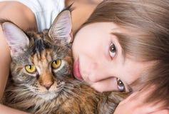 Petite fille avec le chaton de Maine Coon Photo libre de droits