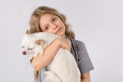 Petite fille avec le chien blanc de chiwawa d'isolement sur le fond blanc Amitié d'animal familier d'enfants Image libre de droits