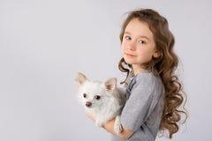 Petite fille avec le chien blanc de chiwawa sur le fond blanc Amitié d'animal familier d'enfants Image stock